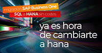 Las ventajas de migrar de MS SQL a SAP Business One HANA en la nube - Picture Blog